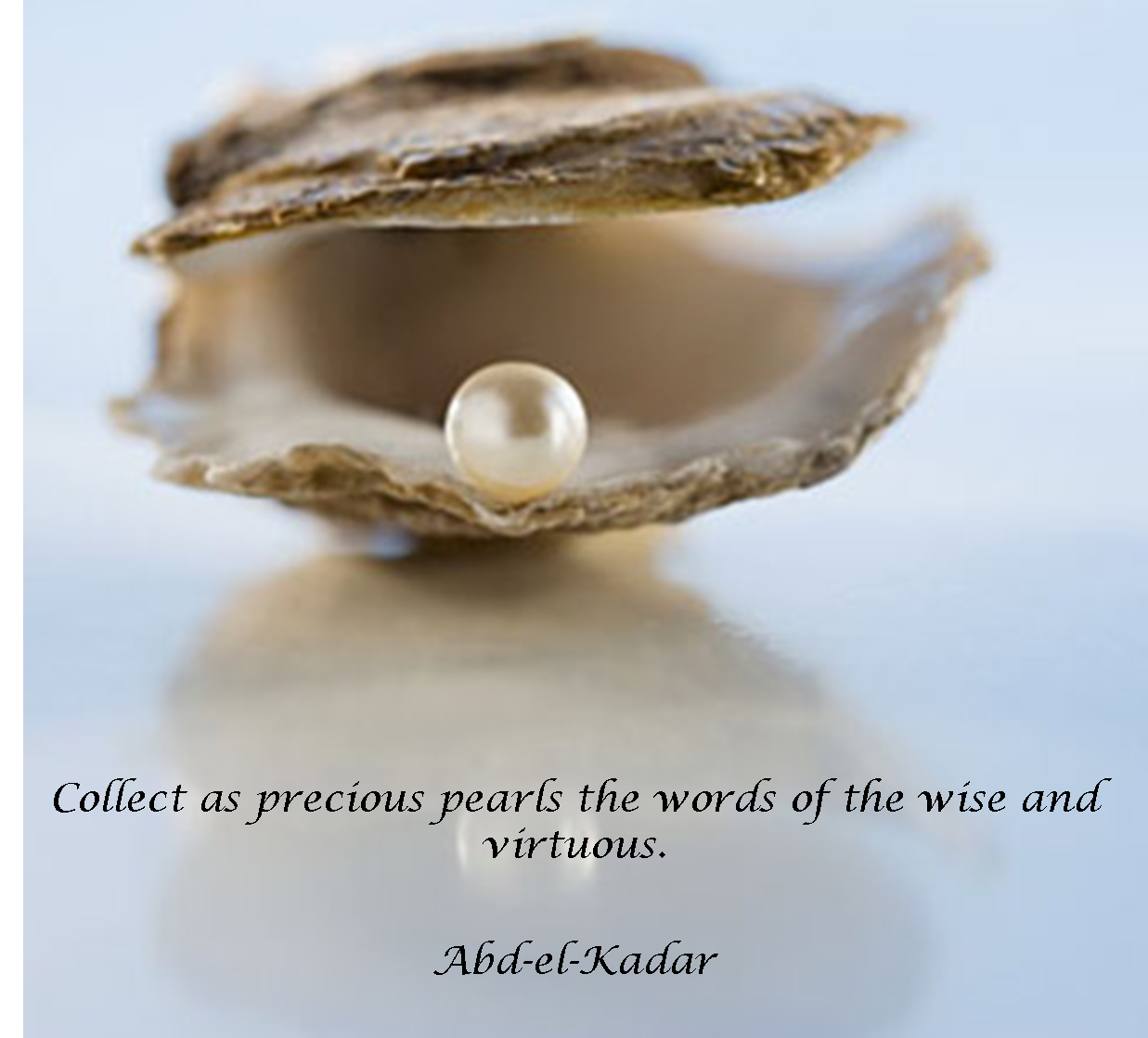 Quotes About Pearls And Friendship Classy Friendship Quotes About Pearls Best Pearl Quotes On Pearls Jewelry.