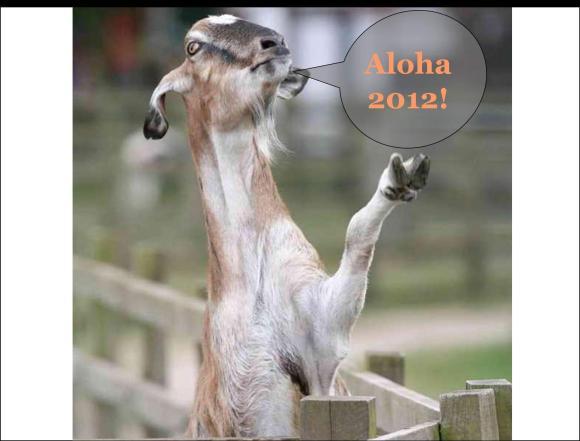 photo courtesy of animalsicons.com