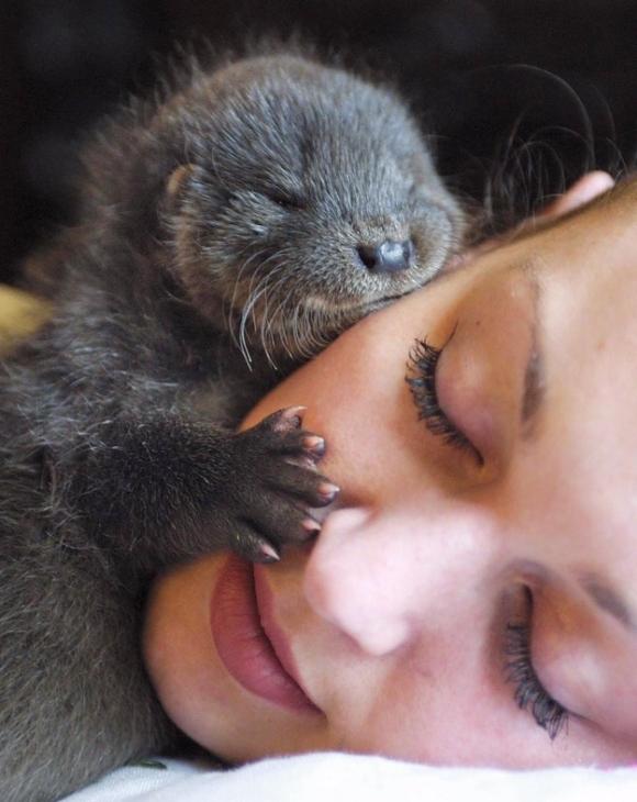 photo courtesy of buzzfeed.com