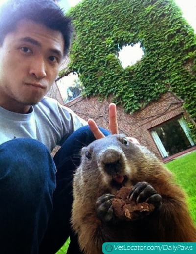 Funny-animals-human-selfies-11