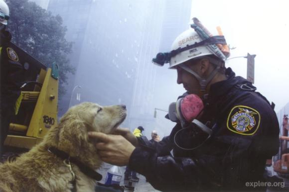 photo courtesy of www.brooklynbark.com