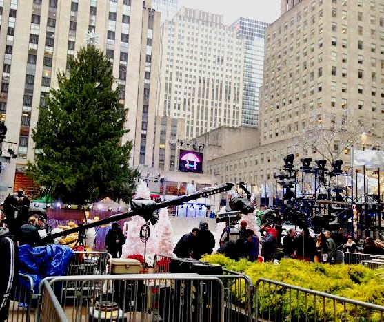 This Year's Rockefeller Center Christmas Tree - almost ready for it's big lighting ceremony tonight!